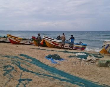 Trinco, Fishermen at Work