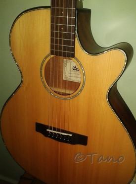 Cambodia, Phnom Penh Guitar