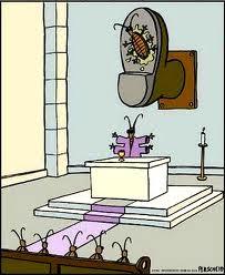 Praying cockroaches