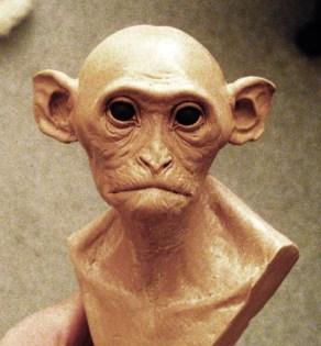 Monkey Bust